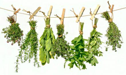 Zo kan je tuin- en keukenkruiden in een wip zelf drogen