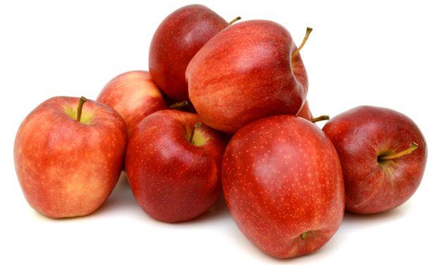 Hoe kan je appels langer, zelfs zeer lang bewaren?
