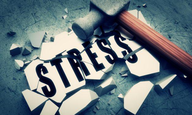 Hoe kan je stress de baas worden?
