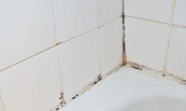Hoe zwarte schimmel in huis snel en natuurlijk verwijderen?