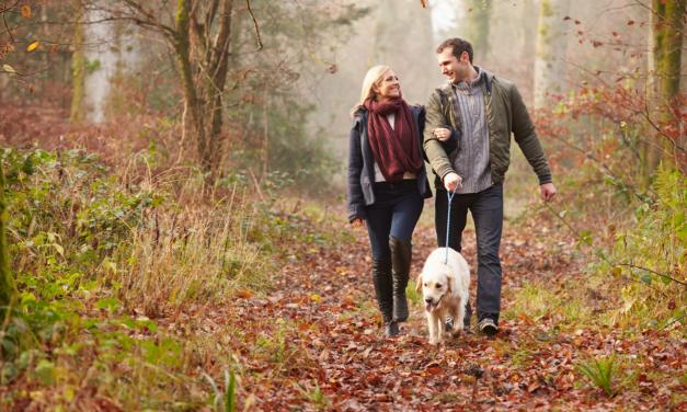 Waarom zijn hondenbezitters gezonder en hebben ze een sterker hart?