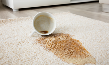 Hoe krijg je vlekken meteen weg uit je beste tapijt?