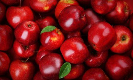 Waarom we niet één, maar twee appels per dag moeten eten