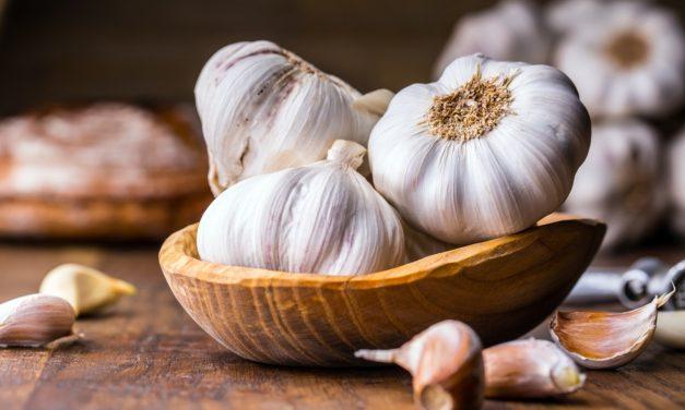 Knoflook: veilig bestrijdingsmiddel voor je planten