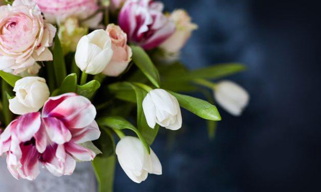 Hoe kan je snijbloemen langer bewaren?