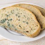 Hoe kan je het levensgevaarlijke broodschimmel voorkomen?