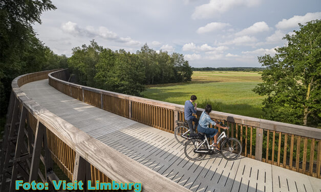 """""""Fietsen door de Heide"""": populairste fietsbestemming in Vlaanderen"""